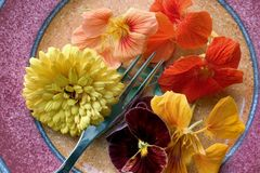 Edible Flowers. A plate of edible flowers Royalty Free Stock Photography