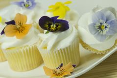 Edible flowers Royalty Free Stock Photos