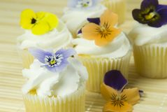 Edible flowers on cupcakes Stock Images