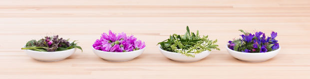 Edible flowers. Four Bowls of different flowers Royalty Free Stock Image