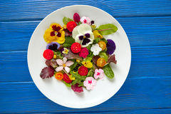 Free Edible Flowers Salad In A Plate Royalty Free Stock Images - 89329429