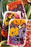 Edible Flowers Royalty Free Stock Image