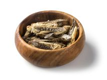 Edible grasshoppers in a wooden bowl royalty free stock images