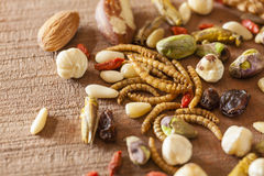 Free Edible Insects And Nuts Royalty Free Stock Photography - 46092037