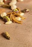 Edible insects and nuts Stock Images