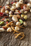 Edible mealworms and nuts Royalty Free Stock Photo