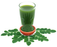 Edible moringa leaves with ground paste Stock Image