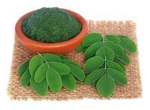 Edible moringa leaves with ground paste Royalty Free Stock Photos