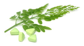 Edible moringa leaves with pills Stock Images
