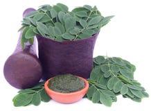 Edible moringa leaves in a vintage mortar Royalty Free Stock Photos