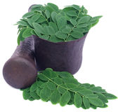 Edible moringa leaves in a vintage mortar Stock Images