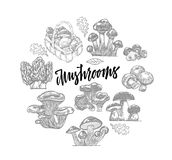 Edible Mushroom Icons Round Template Royalty Free Stock Image