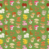 Edible mushroom seamless pattern. Flat icons. Vector illustration. Stock Photography