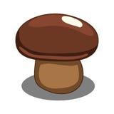 Edible mushroom vector illustration Stock Photos
