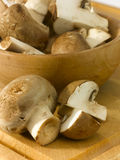 Edible mushrooms Royalty Free Stock Images