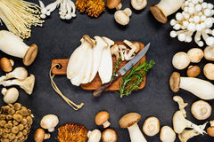 Edible Mushrooms with Chopping Board Royalty Free Stock Photos