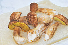 Edible Mushrooms on a Cutting Board Royalty Free Stock Photos