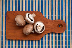 Edible mushrooms on cutting table. Stock Images