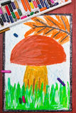 Edible mushrooms in the grass. Colorful drawing: edible mushroom in the grass Royalty Free Stock Image