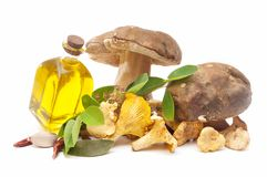 Edible mushrooms and olive oil Stock Photos