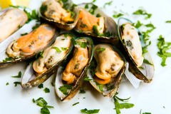 Edible mussels Royalty Free Stock Photo
