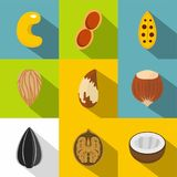 Edible nuts icons set, flat style. Edible nuts icons set. Flat set of 9 edible nuts vector icons for web with long shadow Stock Photography