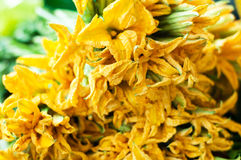 Edible pumpkin flowers on market.  Stock Photography