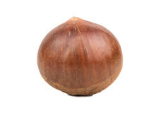 Edible raw chestnut Stock Photos
