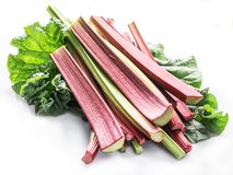 Free Edible Rhubarb Stalks On The White Background Royalty Free Stock Images - 167984189