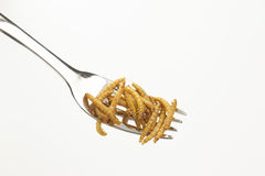 Edible roasted insects  Stock Image