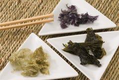 Edible seaweed. Stock Image