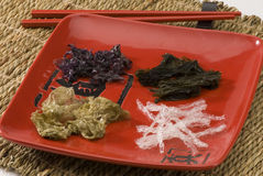 Edible seaweed. Royalty Free Stock Image