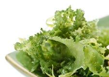 Edible seaweed salad Stock Photography