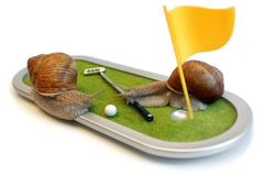 Edible snails. Two edible snails on the golf course isolated on the white background Royalty Free Stock Photo