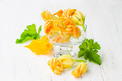 Edible   zucchini flowers on white background. Edible  zucchini flowers on white background Royalty Free Stock Photography