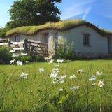 Edifício com telhado verde imagens de stock royalty free