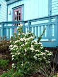 Edifício da cerceta com porta roxa Fotografia de Stock Royalty Free