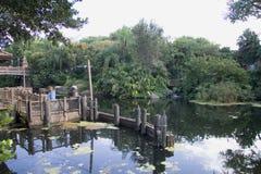 Edifício de Florida no pântano imagem de stock