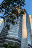 Edifício de vidro moderno Imagem de Stock