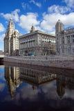 Edifício do fígado e canal novo, Liverpool, Inglaterra fotos de stock royalty free