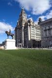 Edifício do fígado, Liverpool, Inglaterra, Reino Unido Fotografia de Stock Royalty Free