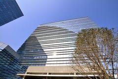 Edifício e árvore modernos Imagem de Stock Royalty Free