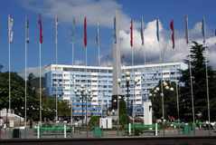 Edifício e bandeiras longos Fotos de Stock