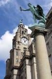 Edifício e estátua do fígado fotos de stock royalty free