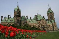 Edifício e Tulips de Parliamen foto de stock royalty free