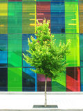 Edifício montreal do congresso Foto de Stock