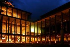 Edifício na noite fotografia de stock royalty free