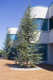 Edifício profissional Imagem de Stock