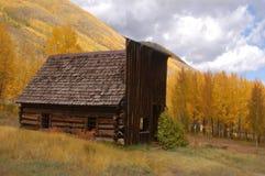 Edifício velho com álamos tremedores em mudança Foto de Stock