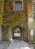 Edifícios da faculdade Foto de Stock